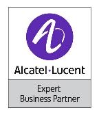 expert business partner